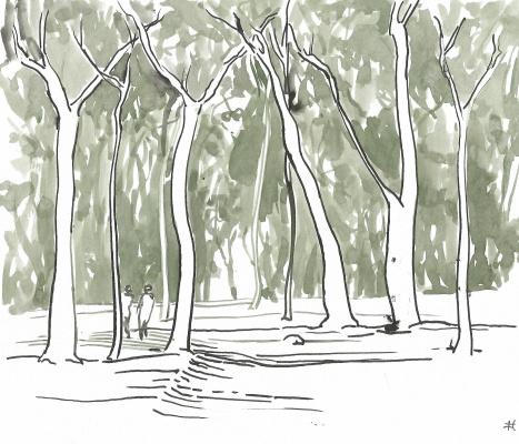 Parque-das-Hortênsias-VII
