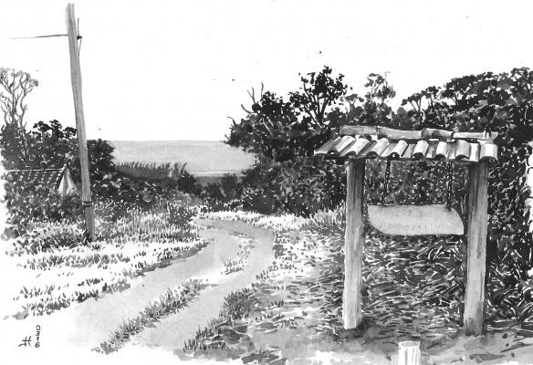 Trilha-do-Morro-da-Itapeva-foto-de-Nilton-Teixeira-13-x-19-cm