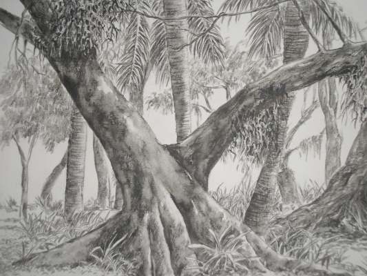 Árvores-2