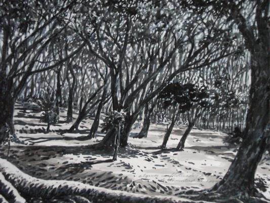 Árvores-4