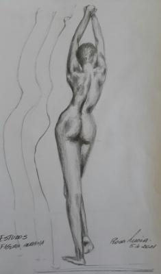 Rosa1-Estudo-anatômico-sobre-postura-e-apoios